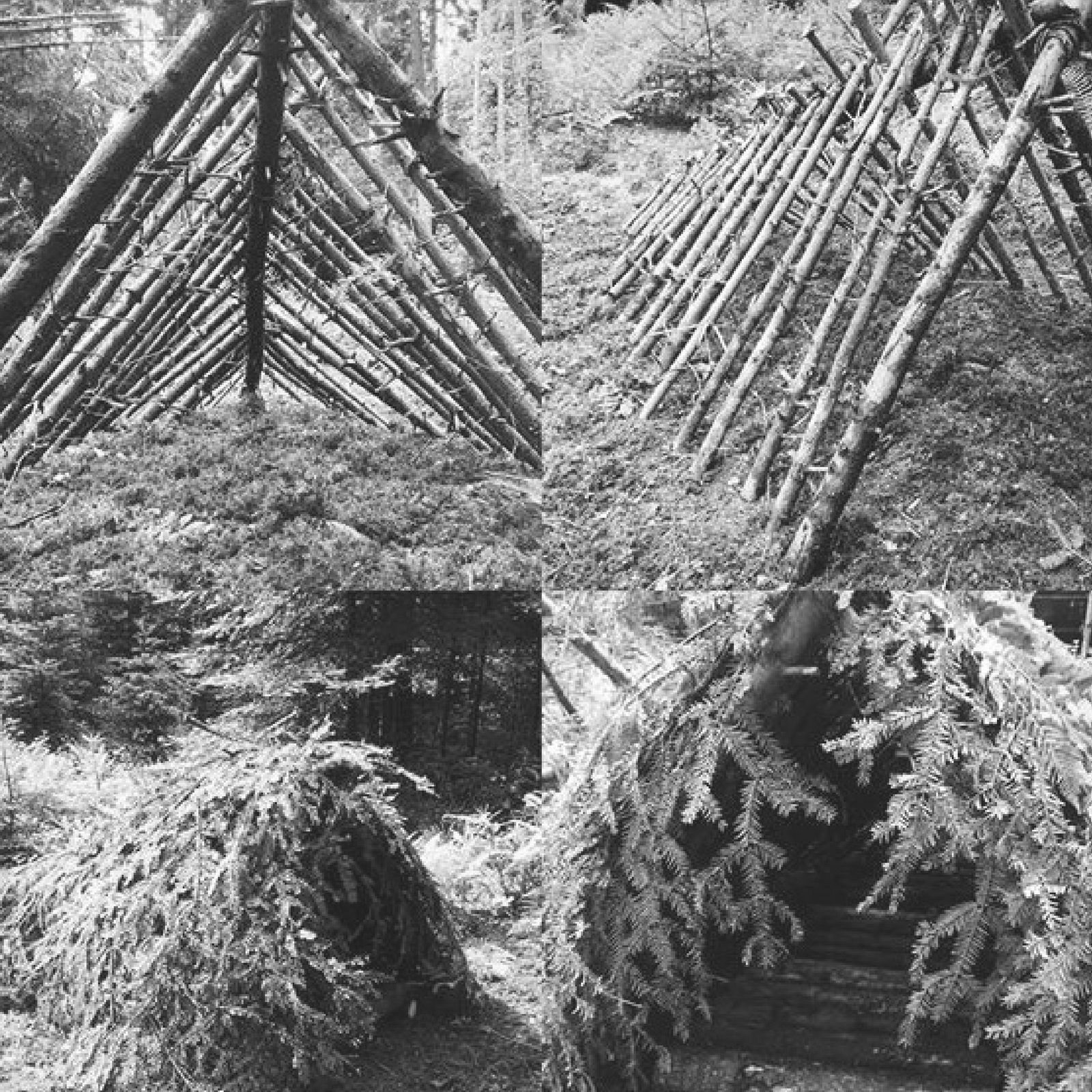 Shtf Shelter: Building A Survival Shelter In The Wild